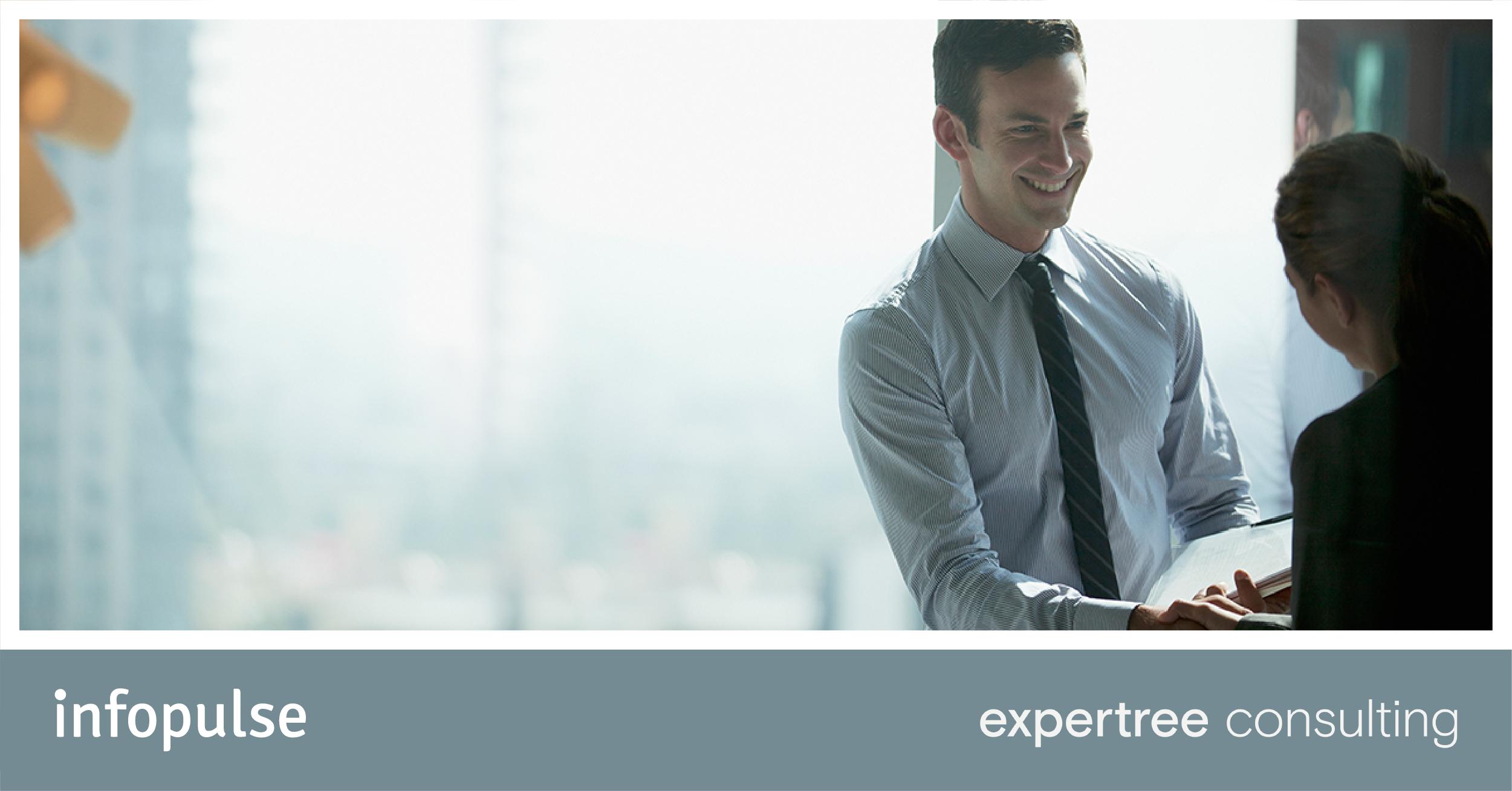 infopulse expertree consulting partnerschaft